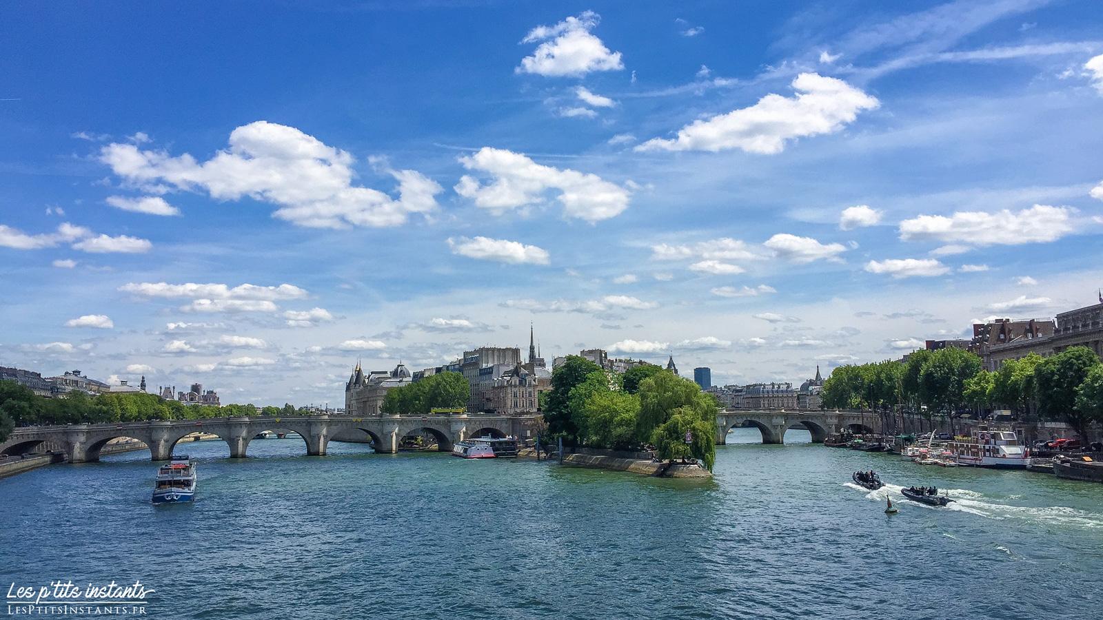 Le Pont Neuf, depuis le Pont des Arts