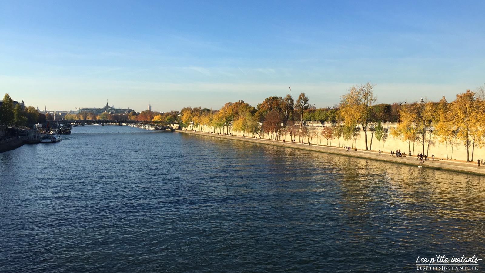La Passerelle Léopold-Sédar-Senghor, depuis le Pont Royal