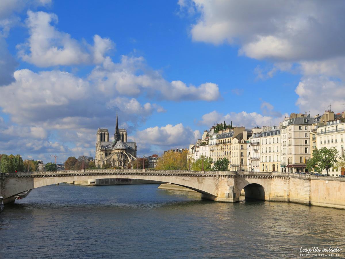 La Cathédrale Notre-Dame de Paris et le Pont de la Tournelle